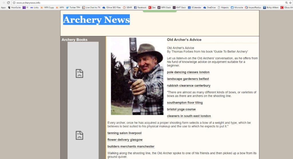 zrzut strony archerynewsinfo